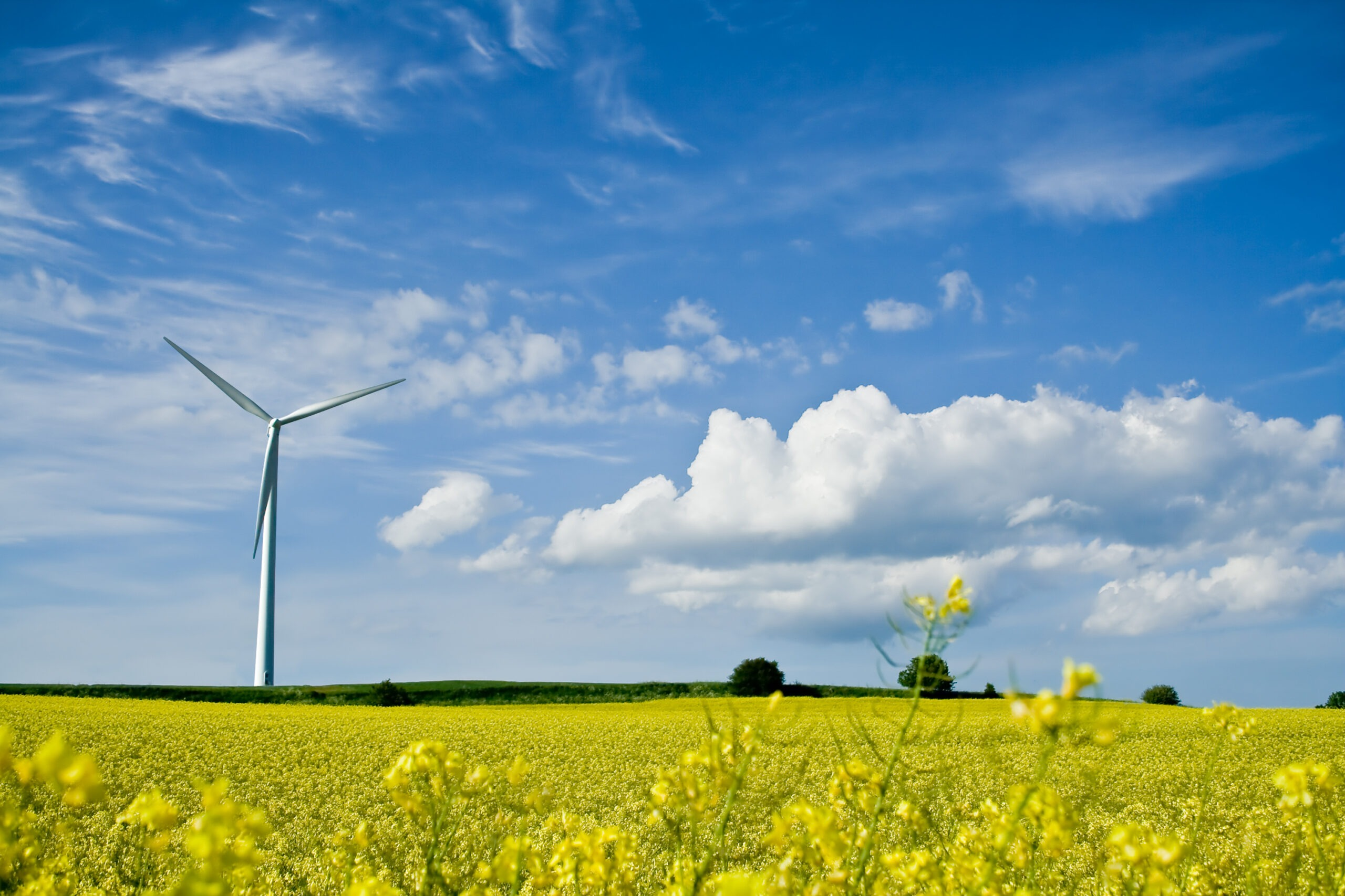 Fristen nærmer sig: Landsbytopmøde 2020 sætter fokus på grøn omstilling
